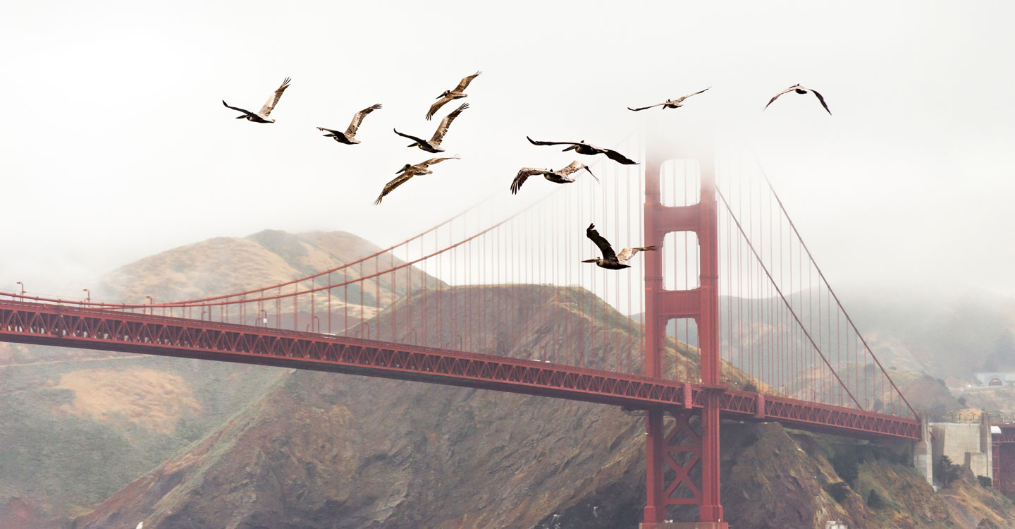 Image of the Golden Gate Bridge